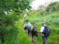 hikers-ireland-2.jpg