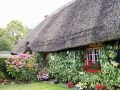 thatched-cottage.jpg